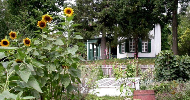 Bellevue House Gardens
